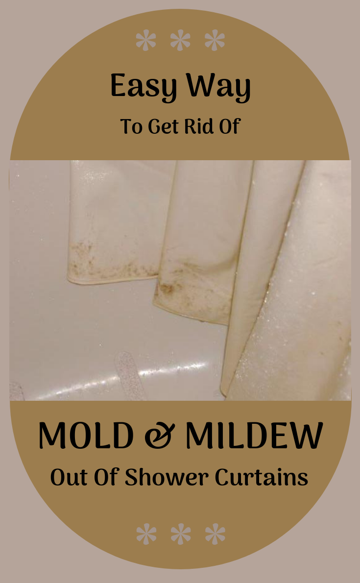 Easy Way To Get Rid Of Mold And Mildew Out Of Shower