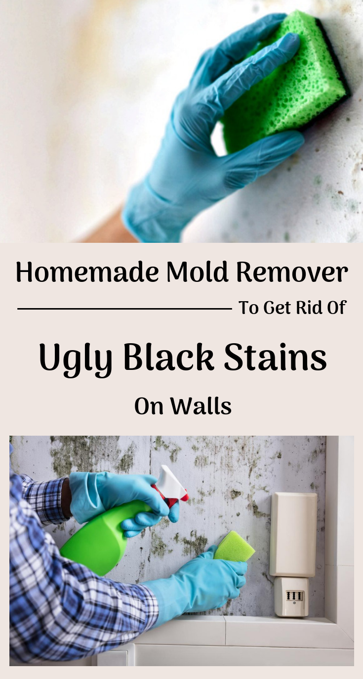 Homemade Mold Remover To Get Rid Of Ugly Black Stains On