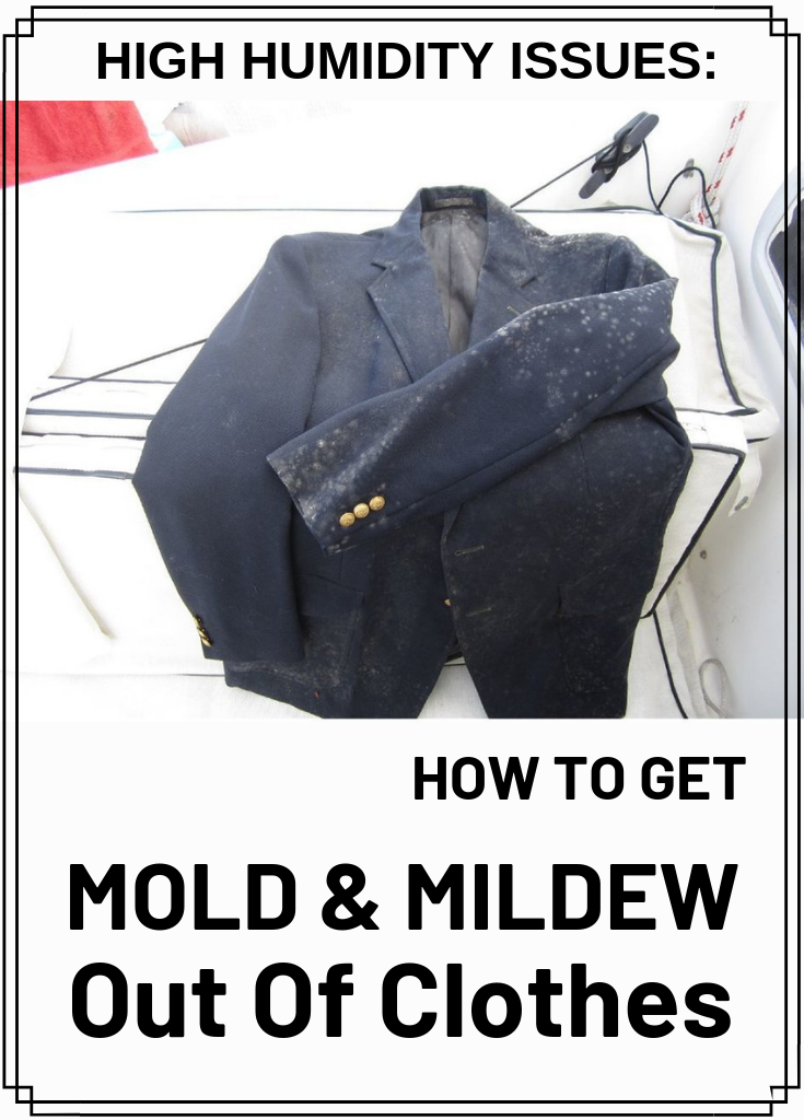 High Humidity Issues How To Get Mold And Mildew Out Of